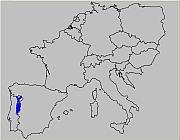 Portugal (ThP)