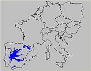 Spanien (ThSP)